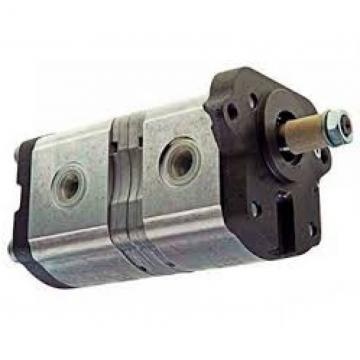 POMPA di sollevatore idraulico per MF 135 150 165 175 175 UK 178 UK 180 235 245 362 372