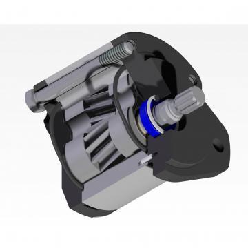 POMPA idraulica per NACHI PVD-1B-32P HITACHI Miniescavatore EX35 ZX30 ZX30U-2