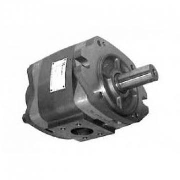 220V 10000PSI pompa idraulica azionata elettrico semplice effetto ELETTROVALVOLA DHL