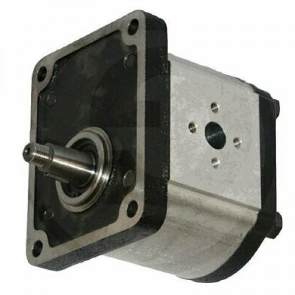 POMPA di sollevatore idraulico per trattore Massey Ferguson 1683301M92 1672251M92
