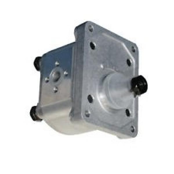 Pompa Idraulica Cilindro Idraulico Per Sollevatore a Forbice 4 Litri Serratura