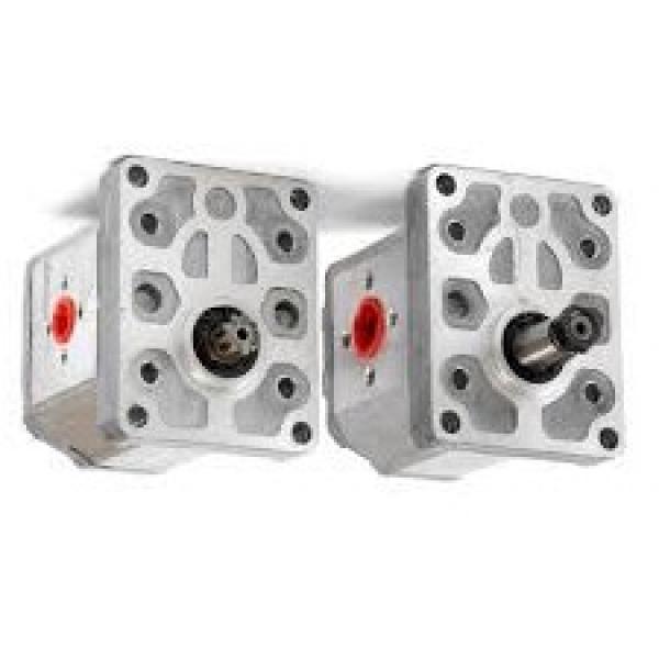 GATES K015556XS Cinghia Di Distribuzione Set